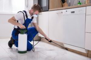 5 Tips On How To Find The Best Pest Control Services Company